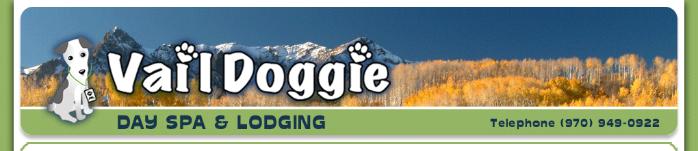 Vail Doggie Day Spa & Lodging - (970) 949-0922